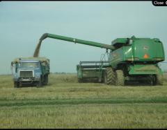 Гибридные пшеница, ячмень, рапс, подсолнечник, соя, кукуруза, горчица