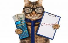 Постановка бухгалтерского учета