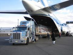 Транспортно-экспедиционные услуги в Украине