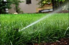 Watering of a lawn