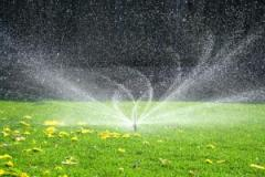 Automatic watering of a lawn