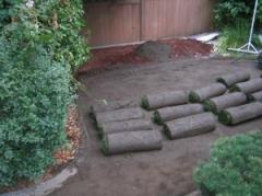 Rolled lawns