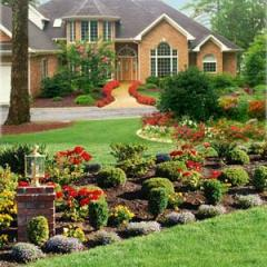 Watering of flower beds