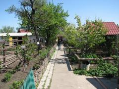 Экскурсии на страусиную ферму