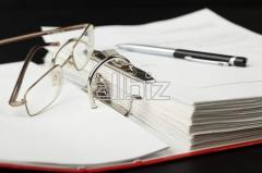 Auditor services