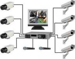 Traffic video control. Identification of license