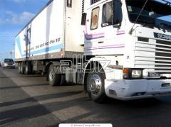 International transportation of goods by long logs