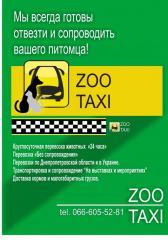 Перевозка домашних животных по Украине и за