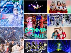 Артисты на Новогодний праздник 2015!