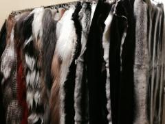 Tailoring of fur coats and short fur coats,