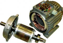 Repair of the electric motor