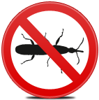 Extermination of bugs