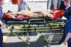 Перевозка больных с Украины в СНГ и Европу