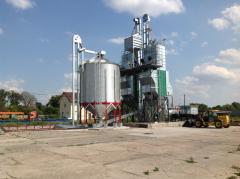 Услуги по сушке зерновых культур