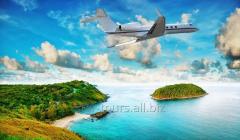 Авиабилеты на чартерные и регулярные рейсы онлайн