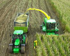 Collecting a grass and cleaning of corn on a sil