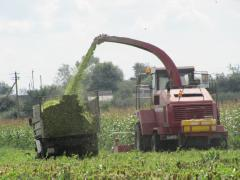 Services of the silage combine