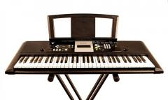 Rent of Yamaha PSR-E223 of a synthesizer