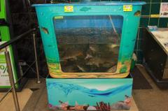 Торговые аквариумы для продажи живой рыбы на заказ