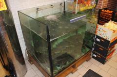 Аквариумы для живой рыбы - установка