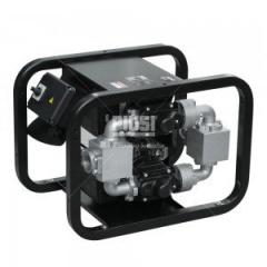 Service of pumps for diesel fuel and gasoline