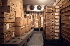 Freezing and refrigerating warehouses