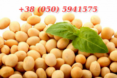 Soy processing.