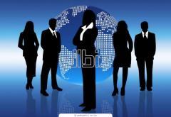 Компании, используемые в международном налоговом