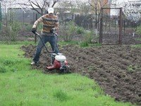 Cultivation of the soil