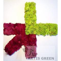 Экологотипы из мха от Artis Green