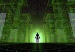 Organization of virtual employment.