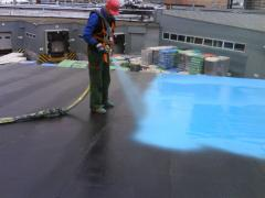 Polimochevina's waterproofing