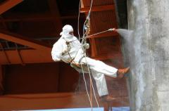 Cleaning and coloring of reinforced concrete