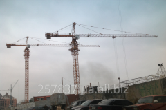 Rent of the crane of tower N 5613