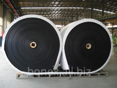 Production of the conveyer belt according to