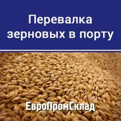 Transfer grain in Dnepro-Bugsky seaport (Nikolaev)