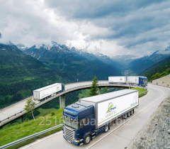 Road haulage of combined freigh