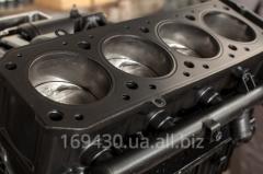 Диагностика и ремонт дизельных двигателей легковых автомобилей и микроавтобусов европейского и азиатского производства