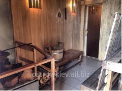 Sauna, bath on the Trukhanovy island
