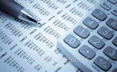 Разработка и внедрение бюджетов (системы