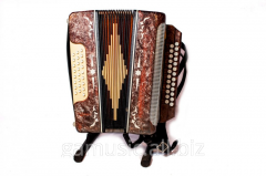 Rent, hire of an accordion in Kiev
