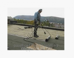 Repair of a roof