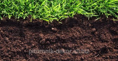 Services of replacement of soil in garden