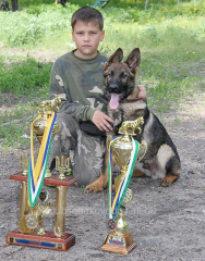 Training of children with dogs to competitions