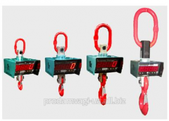 Rent of crane scales