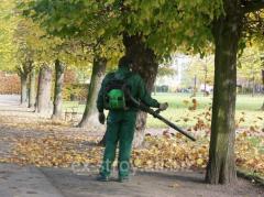 Уборка листьев, обрезка деревьев, услуги по уборке в Херсоне