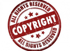 Assessment of intellectual property
