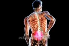 Treatment of hernias of intervertebral disks