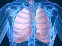Cancer therapy of lungs