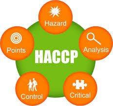 Пищевая безопасность - ISO-HACCP